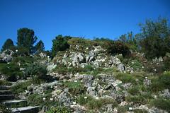 Alpinum - Botanischer Garten