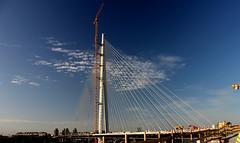New Sava Bridge, Belgrade, Serbia