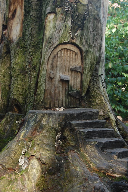 Door Of The Fairy Tree Flickr Photo Sharing