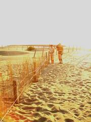 七股編籬護沙測量成果