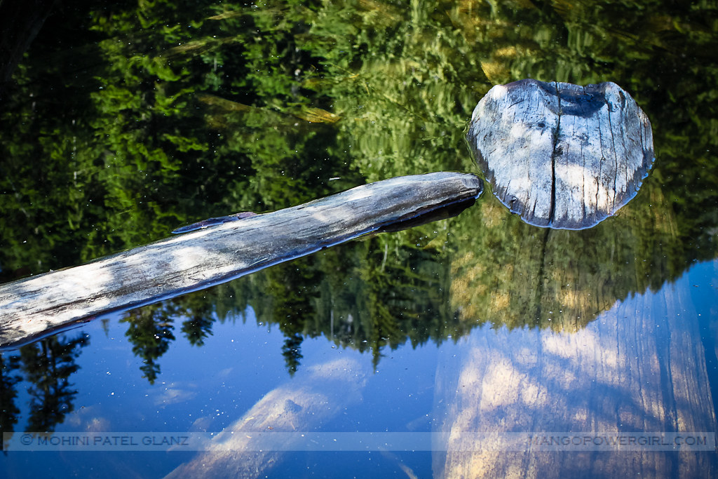 reflected in lake talapus