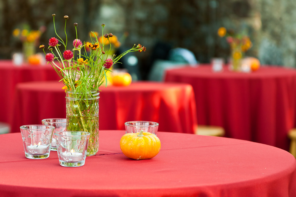 How to Make your Farm Party a Grand Success?