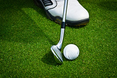 wheel(0.0), grass(1.0), recreation(1.0), golf club(1.0), green(1.0), golf(1.0), golf equipment(1.0), ball game(1.0), lawn(1.0),