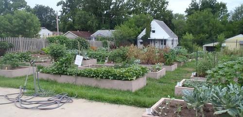 Community Gardens The Demo Garden Blog