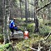 #Orientering #Competion #Sverige #Sport #Vacker #Natur by stefanpettersson68