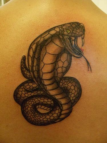 Snake-Tattoos-Design