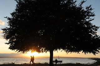 When we're together it means so much ... tree, sea, bench, sailboat, people, Golden Gardens Park, Seattle, Washington, USA | by Wonderlane