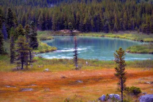 Klondike Highway - Landscape