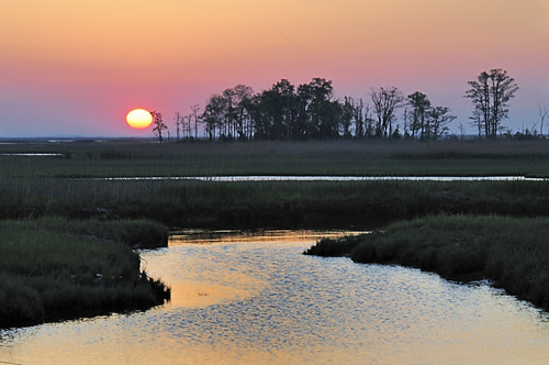 Bombay Hook Sunrise