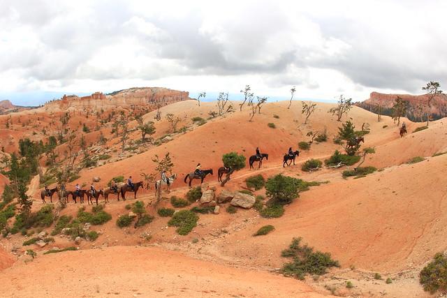 Bryce Canyon Activities