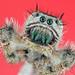 SpiderGreenFangs by NatureFoto1