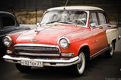 Volga 21, red beauty