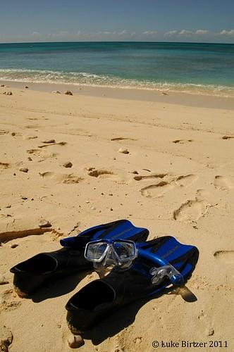 ocean cruise carnival sea vacation beach snorkel grand scuba grandturk atlantic snorkeling scubadiving caribbean royalcaribbean turk carnivalcruise turksandcaicos beachresort cruisevacation cruiseline cockburntown ospreybeachhotel lukebirtzer