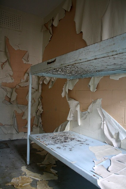 peeling paint and black mould