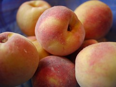pluot(0.0), plant(0.0), apricot(1.0), peach(1.0), produce(1.0), fruit(1.0), food(1.0), nectarine(1.0),