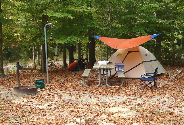 Campers at Chippokes Plantation State Park
