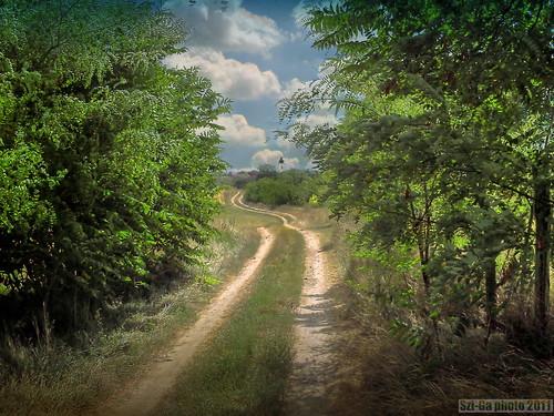 landscape country szép szgabi