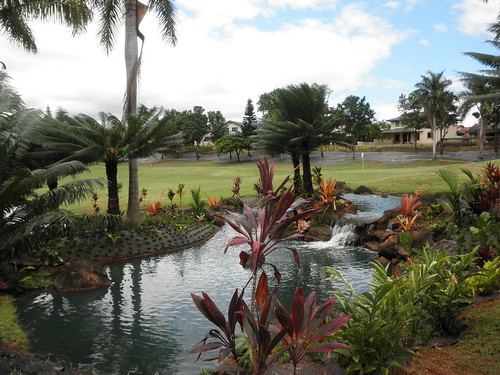 WAIKELE COUNTRY CLUB 269
