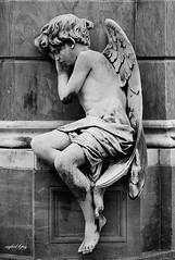 La Recoleta: City of Angels