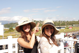 Thoroughbred 2011 | Hastings Racecourse