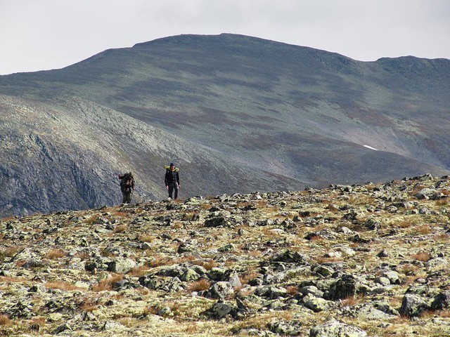 Wandern im Fjell