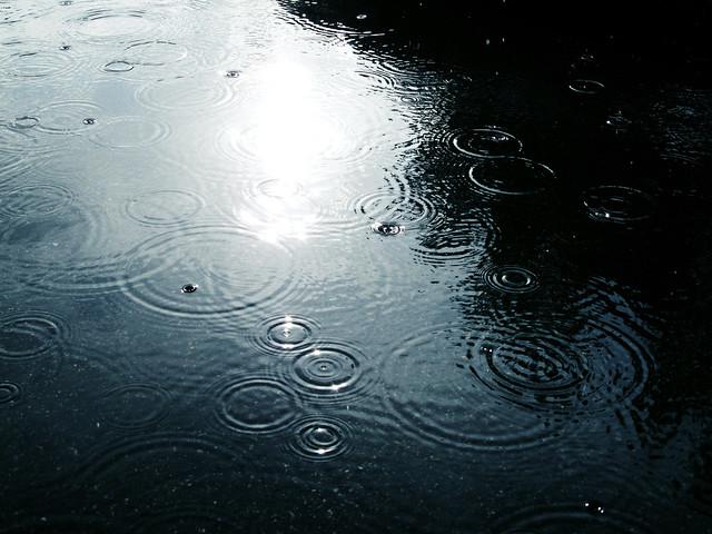 (244/365) Rain & Sunshine
