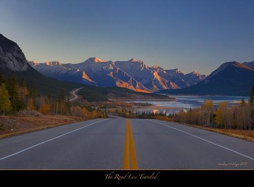 autumn lake canada alberta coth5 davidthompsonhwayroute11abraham