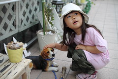 SAKURAKO pat a dog on the head.