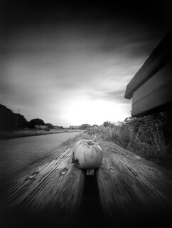 Pinhole Apple