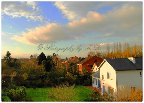 autumn trees fall nature clouds automne garden landscape arboles belgium belgique jardin arbres otoño mansion bergen nuages paysage mons belgica hx1 dschx1