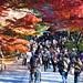 2010 京都 秋:南禪寺 紅葉走道