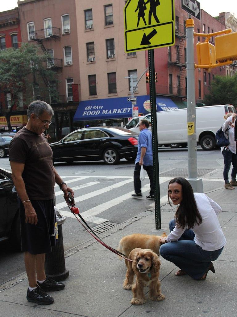 Dog Walking Jobs Nyc App