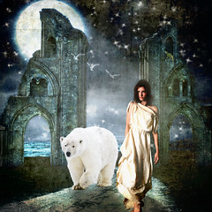 The beauty & the bear