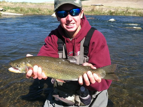 Fly fishing colorado s south platte for cut bow s for South platte fishing report