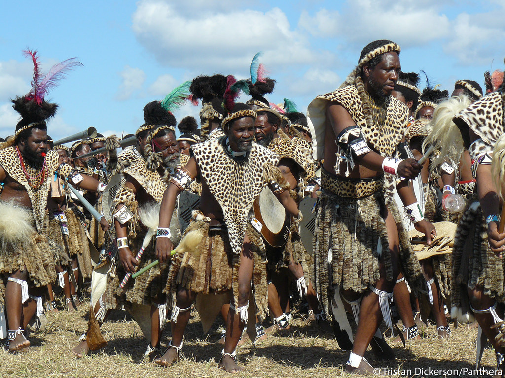 Shembe elders wearing leopard skins