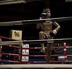 Muay Thai in Bangkok III