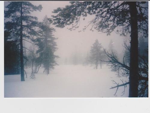 vinter 007