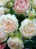 Old English Rose Bouquet