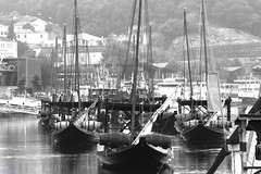 dock(0.0), gondola(0.0), vehicle(1.0), mast(1.0), monochrome photography(1.0), tall ship(1.0), watercraft(1.0), monochrome(1.0), black-and-white(1.0), marina(1.0), boat(1.0), waterway(1.0),