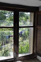 Vistas por la ventana