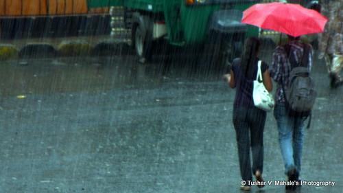 Raincoat pic22