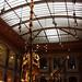 Dinosaur Hall by photojennic