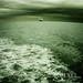 ~ seascape ~ by ~ Pixel Passion ~