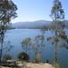 Los-Gatos-Creek-2011-09-05