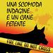 Gaia Conventi, Una scomoda indagine e un cane fetente
