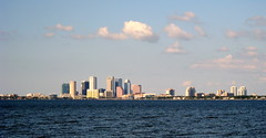 Tampa - Ballast Point Park - Downtown Tampa Skyline Across Hillsborough Bay