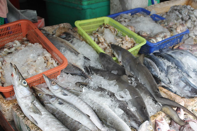 Market at Thongsala - check out the baby sharks!