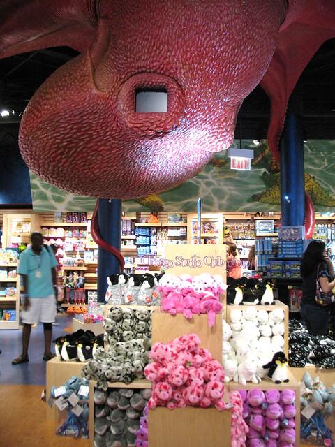 Aquarium store chicago shedd aquarium shedd aquarium3 for Aquarium shop