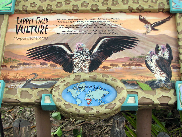 Lappet-faced Vulture sign