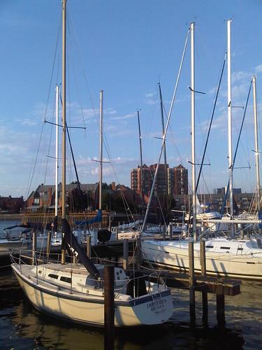 Sailboats, Erie Basin Marina